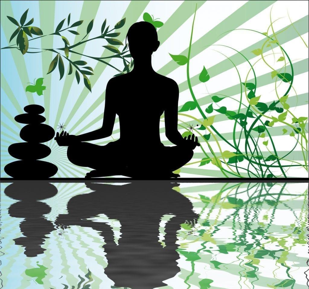 Avis Hypnose et sérénité Confiance en soi Totale zenitude ShaffB Bourg-La-Reine bien-être motivation succès réussite stress