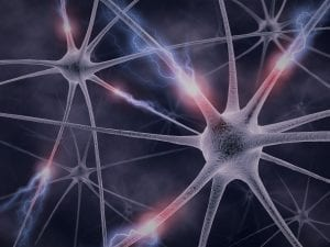 """Hypnose et neurones miroirs :"""" Qu'on fait pour vous vos neurones miroirs aujourd'hui?  Par Shaff Hypnose Bourg-La-Reine (92340) Hypnose et Neurones miroirs à L'Haÿ-les-Roses (94240) , Hypnose et Neurones miroirs  à Cachan (94230 ) , Hypnose et Neurones miroirs  à Arcueil (94110 ), Hypnose et Neurones miroirs  à Bagneux (92220 ) , Hypnose et Neurones miroirs  à Sceaux (92330 ), Hypnose et Neurones miroirs  à Fontenay-aux-Roses (92260 ), Hypnose et Neurones miroirs  à Chevilly-Larue (94550 ) , Hypnose et Neurones miroirs s à Châtillon (92320 ), Hypnose et Neurones miroirs  à Fresnes (94260 ), Hypnose et Neurones miroirs  au Plessis-Robinson (92350 ) , Hypnose et Neurones miroirs  à Montrouge (92120 ) , Hypnose et Neurones miroirs  à Antony (92160 ), Hypnose et Neurones miroirs  à Gentilly (94250 ), Hypnose et Neurones miroirs  à Malakoff (92240 ), Hypnose et Neurones miroirs  à Villejuif (94800 ) , Hypnose et Neurones miroirs  à Clamart (92140 ), Hypnose et Neurones miroirs  à Châtenay-Malabry (92290 ), Hypnose et Neurones miroirs  à Rungis (94150 ) , Hypnose et Neurones miroirs  au Kremlin-Bicêtre (94270), Hypnose et Neurones miroirs  à Paris (75), Hypnose et Neurones miroirs  en Île de France , Hypnose et Neurones miroirs  à Paris (75000) , Hypnose et Neurones miroirs  à Boulogne-Billancourt (92100) , Hypnose et Neurones miroirs  à Saint-Denis (93200) , Hypnose et Neurones miroirs  à Argenteuil (95100) , Hypnose et Neurones miroirs  à Montreuil (93100) , Hypnose et Neurones miroirs  à Créteil (94000) , Hypnose et Neurones miroirs  à Nanterre (92000) , Hypnose et Neurones miroirs  à Courbevoie (92400) , Hypnose et Neurones miroirs  à Versailles (78000) , Hypnose et Neurones miroirs  à Vitry-sur-Seine (94400) , Hypnose et Neurones miroirs  à Colombes (92700) , Hypnose et Neurones miroirs  à Asnières-sur-Seine (92600) , Hypnose et Neurones miroirs  à Aulnay-sous-Bois (93600) , Hypnose et Neurones miroirs  à Rueil-Malmaison (92500) , Hypnose et Neurones miroirs  à Auber"""